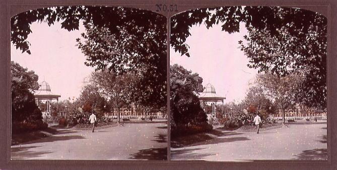 作品画像:上海の外園公園(No.51)