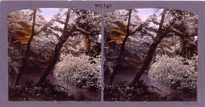 作品画像:王子権現の滝の川(No.240)