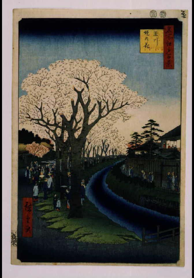 作品画像:名所江戸百景 玉川堤の花