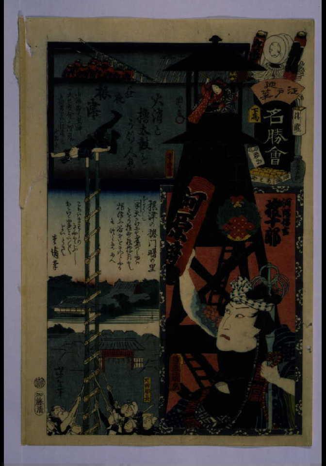作品画像:江戸の花名勝会 れ 九番組