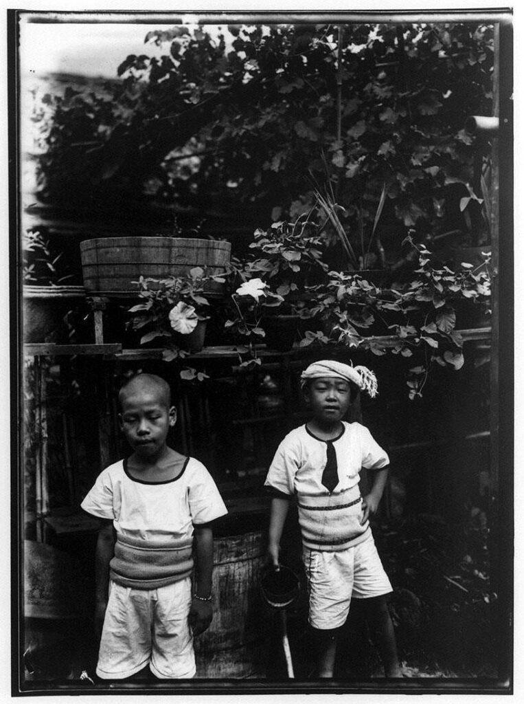 作品画像:朝顔と2人の少年