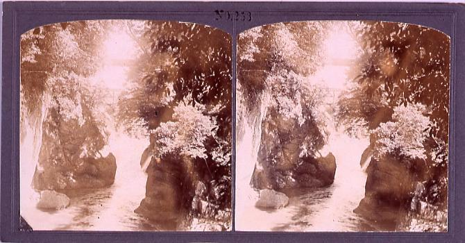 作品画像:甲斐の猿橋(No.253)