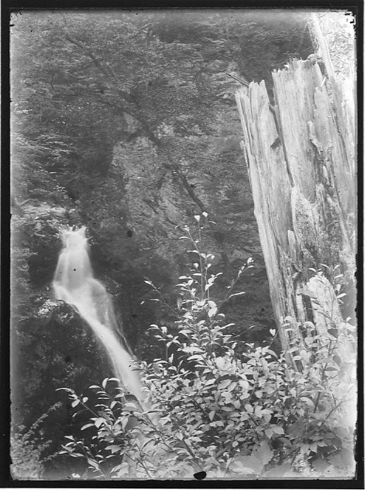 作品画像:滝風景