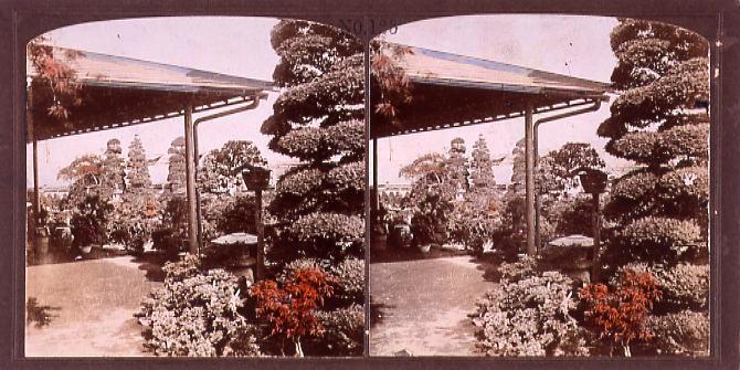 作品画像:庭園の植栽(No.123)