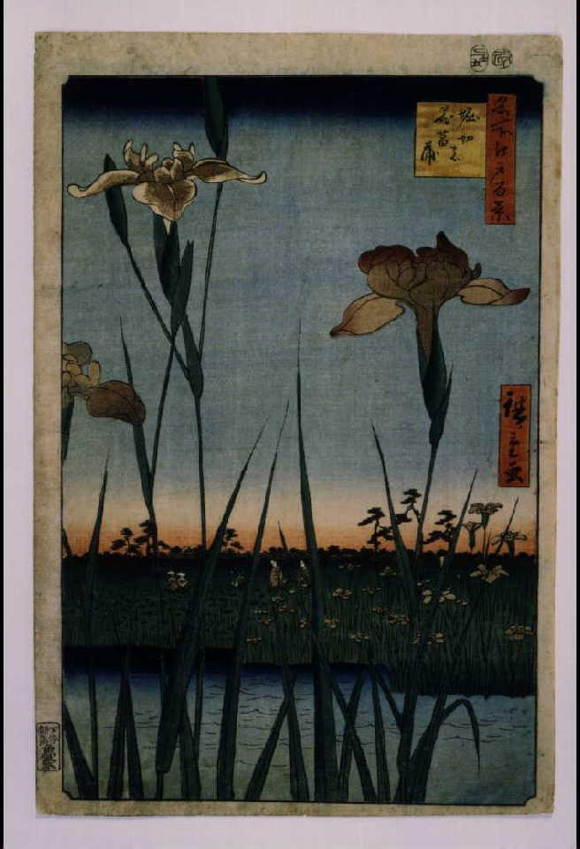 作品画像:名所江戸百景 堀切の花菖蒲