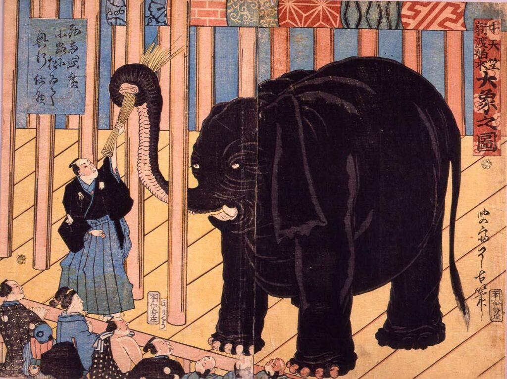 作品画像:中天竺新渡舶来大象之図