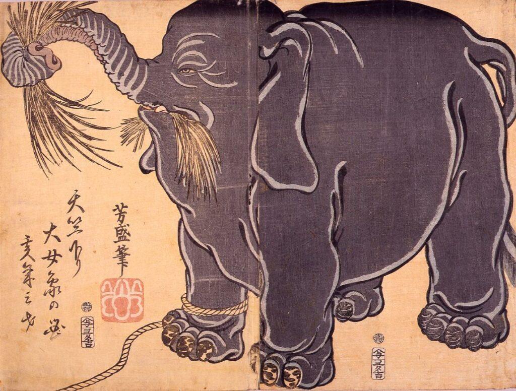 作品画像:天竺下り大女象の図