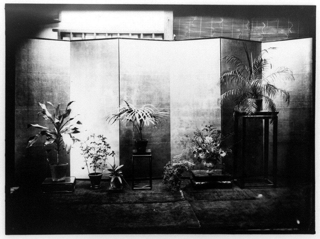 作品画像:屏風と鉢植え