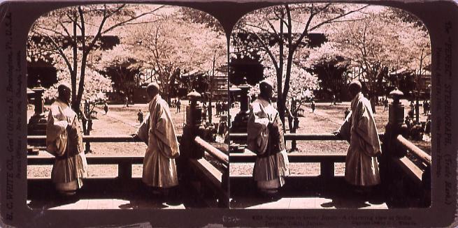 作品画像:Springtime in lovely Japan―a charming viewAt Shiba Temple,Tokio,Japan.4024