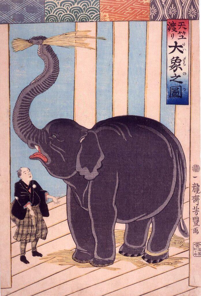 作品画像:天竺渡り大象之図