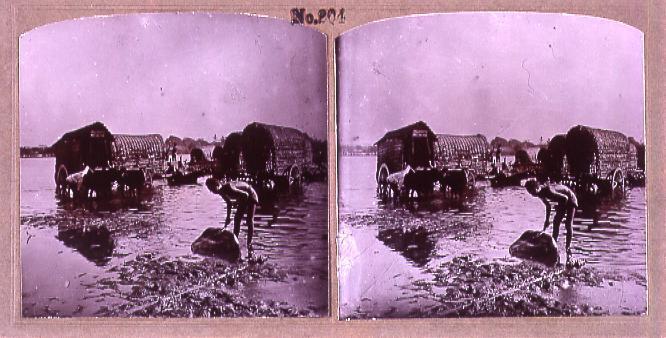 作品画像:インドの牛車洗い(No.204)