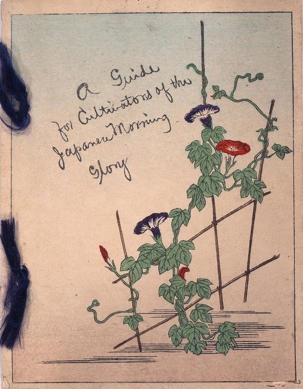作品画像:日本朝顔栽培の手引き(A Guide for Cultivators of the Japanese Morning Glory)