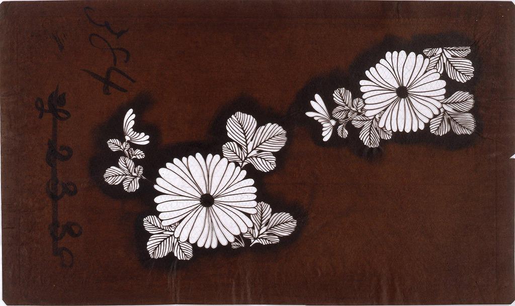 作品画像:長板中形型紙 菊