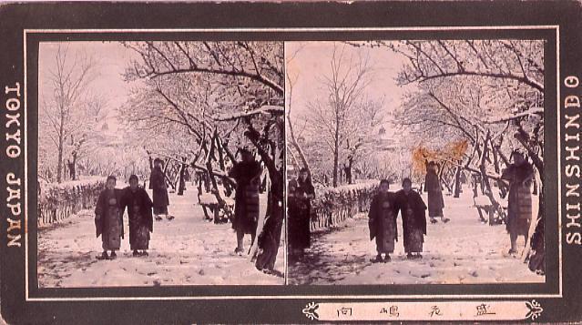 作品画像:向島花盛(雪景)