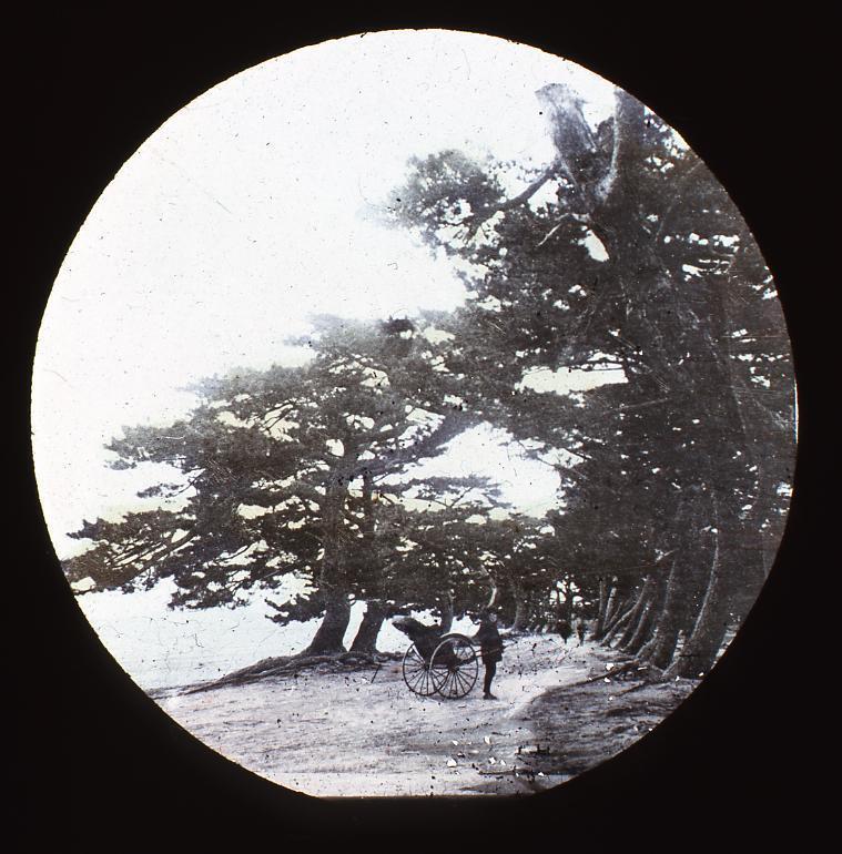 作品画像:名所 播州 磨子