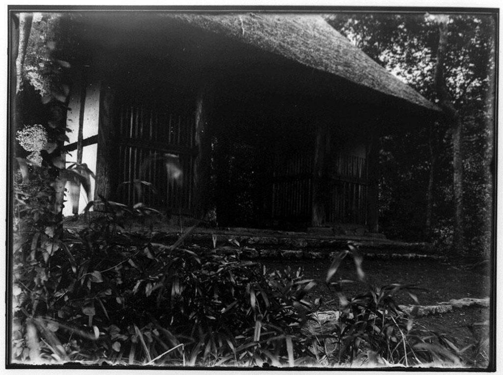 作品画像:藁葺き屋根の門