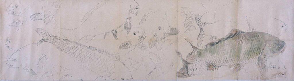 作品画像:粉本 鯉