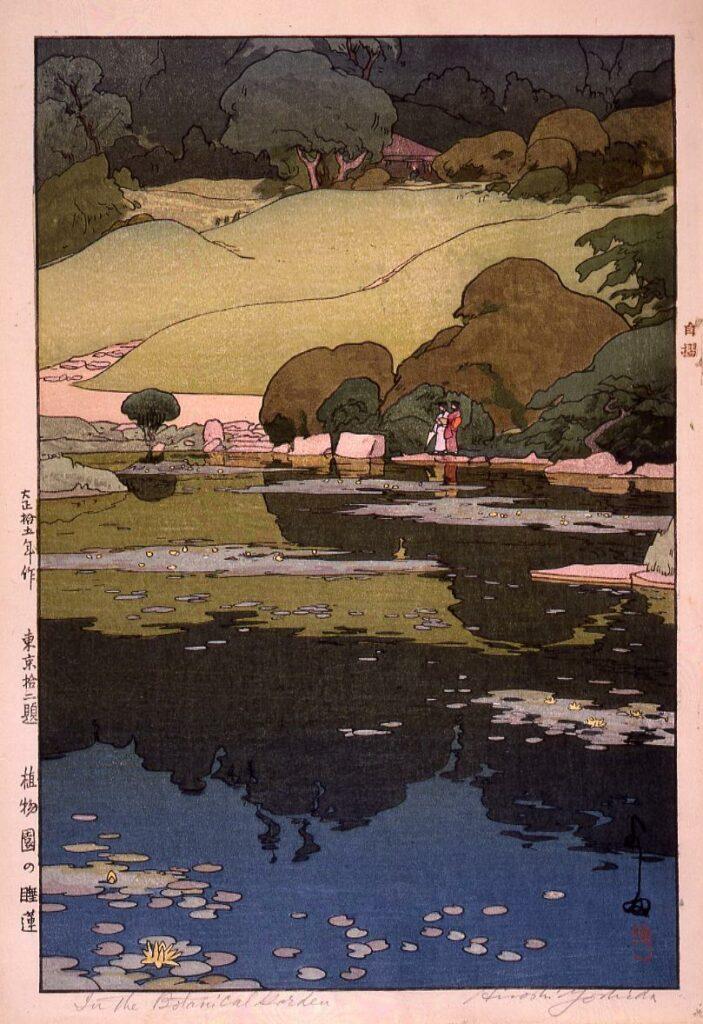 作品画像:東京拾二題 植物園の睡蓮