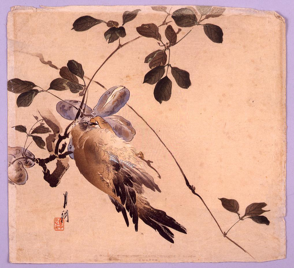 作品画像:あけびと鳥