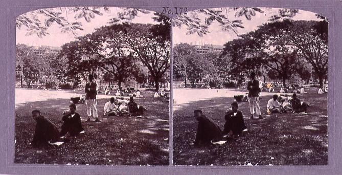 作品画像:ラングーン市内の公園(No.172)