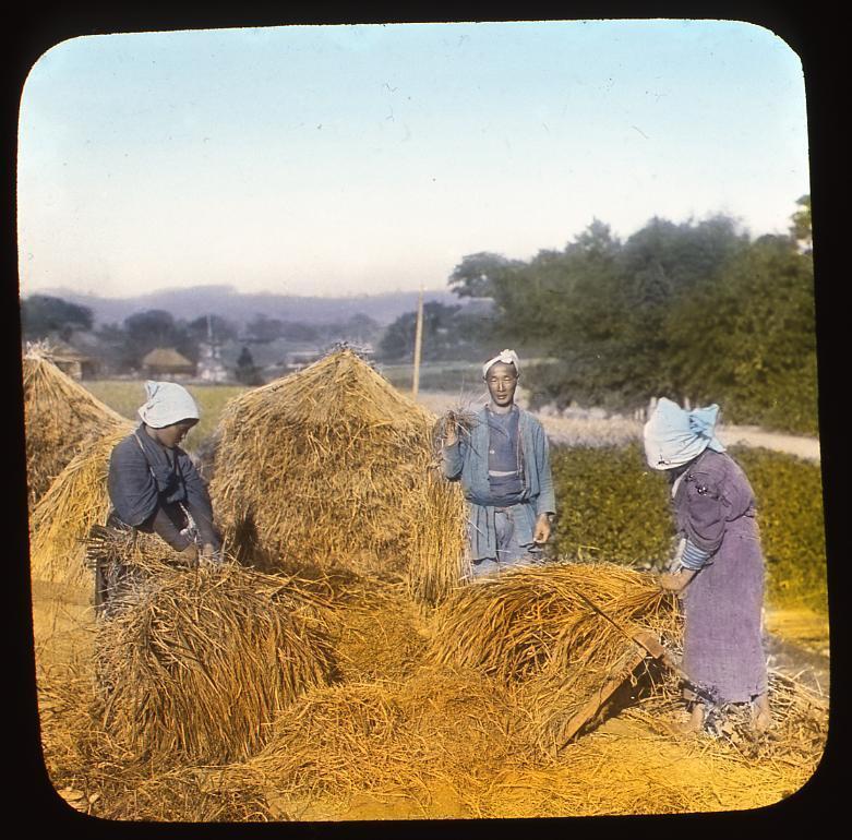 作品画像:脱穀をする農民たち
