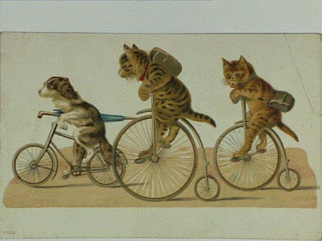 作品画像:自転車で出かける犬と猫(外国製)