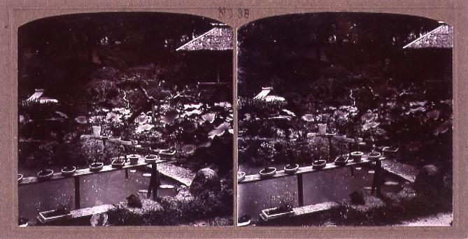 作品画像:庭園(No.38)